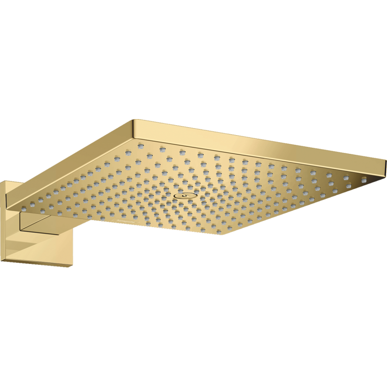 RAINDANCE E верхний душ 300 1jеt с держателем, цвет полированное золото, фото 1