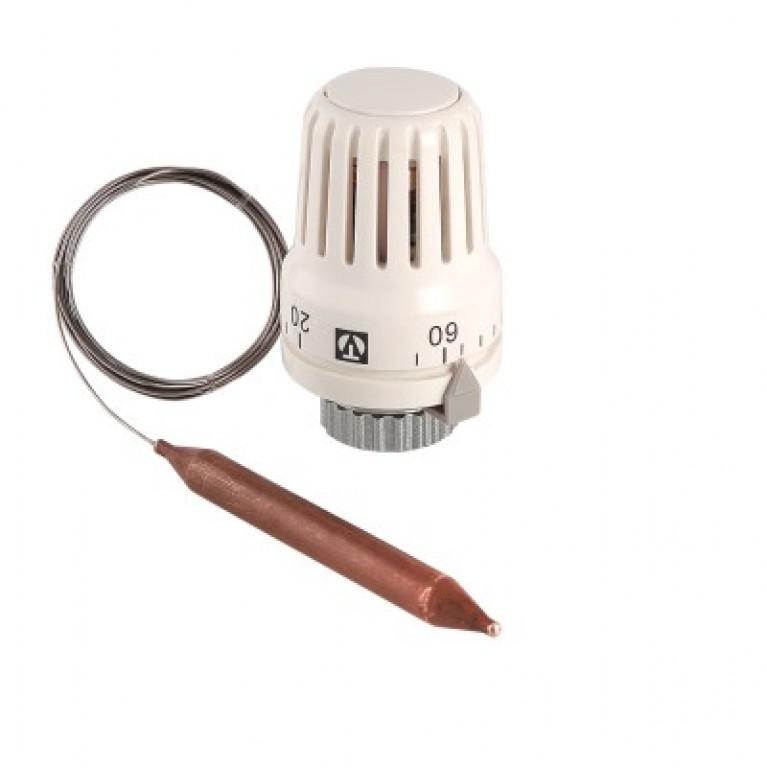 Термостатическая головка с выносным погружным датчиком 20–60 °С, 2 м