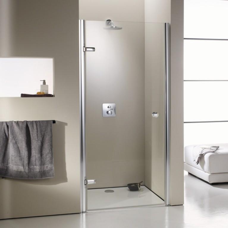 ENJOY ELEGANCE дверь распашная для ниши 100*200см (проф гл хром,стекло прозр Antipl), фото 1