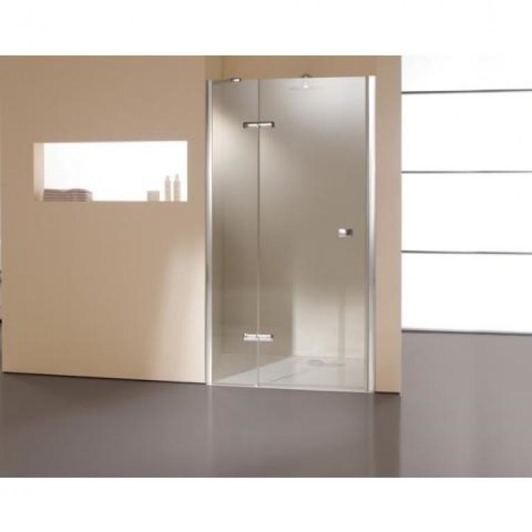 ENJOY дверь распашная  с неподвижным сегментом, фото 1
